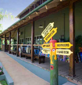 Rainforest Adventures park at Mystic Mountain
